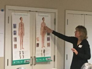 Course instructor points to anatomy diagram